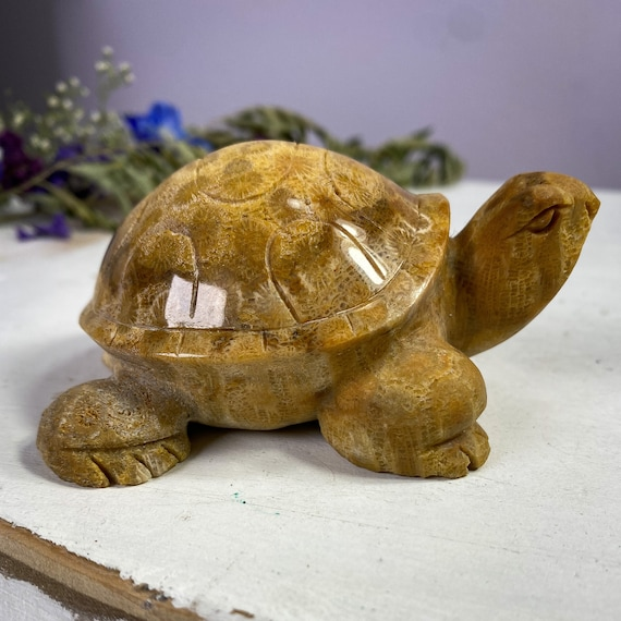 Agatized Fossilized Coral Turtle Statue, Coral Turtle