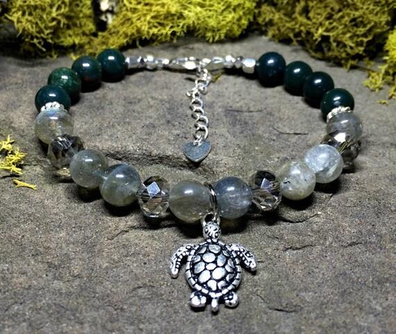 Enchanted Turtle