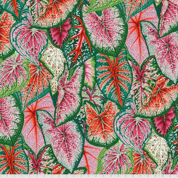 Pre-Order on Separate Order! CALADIUMS BRIGHT Philip Jacobs Kaffe Fassett Collective - Sold in 1/2yd units - Multiples cut continuous
