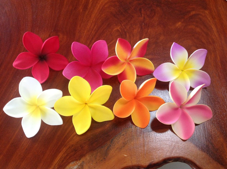 Hawaiian frangipani plumeria flower for float hair clip etsy zoom izmirmasajfo