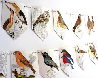 Birds decor, Birds garland, Birds decorations, Birds party decor, Nature decor, Birds paper bunting,  Ornithology, Nature lover gift