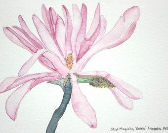 Mini Kühlschrank Pink : Original watercolour cards gift tags & von yorkshireroseart auf etsy