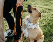 Pet Wedding, Custom Order Dog Floral Wreath, Dog Flower Collar, Dog Photo Shoot, Dog Wedding Flowers, Puppy Floral Collar, Ring Bearer Dog