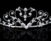 Exquisite Bridal Wedding Prom Heart Rhinestone Crystal Tiara (507)