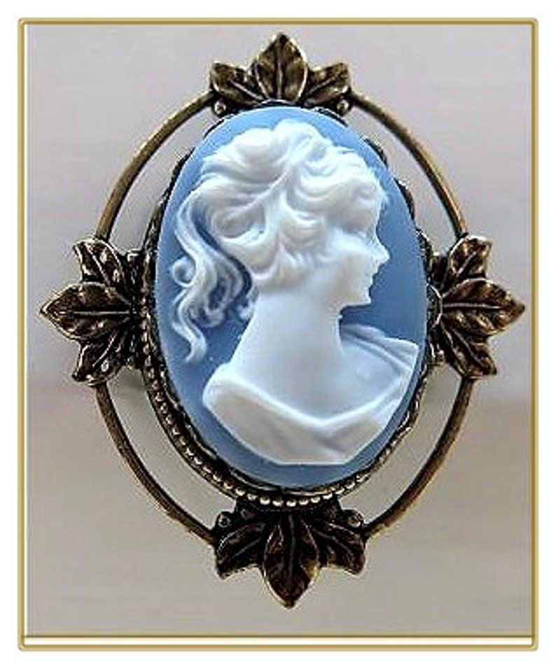 Vintage Style Jewelry, Retro Jewelry Cameo Pin Available in Three Colors $19.00 AT vintagedancer.com