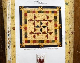 Pinwheel Quilt Design and Piecing Kit