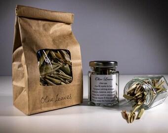 Olive Leaves - Olea spp.
