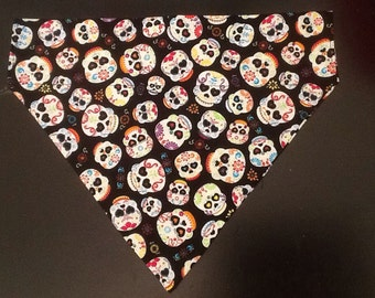 Pirate 'fancy' skulls dog bandana, over the collar