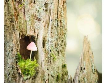 "Pink Mushroom greeting card  - 5x7"" frameable"