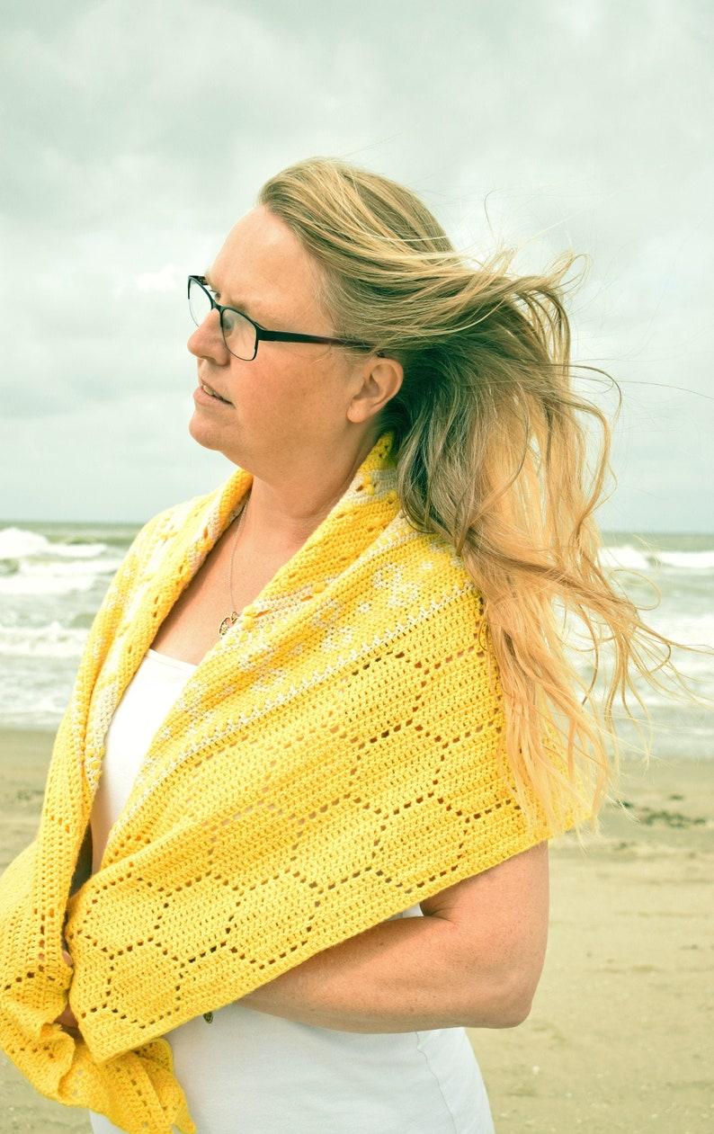 History of Bees crochet shawl pattern PDF image 0