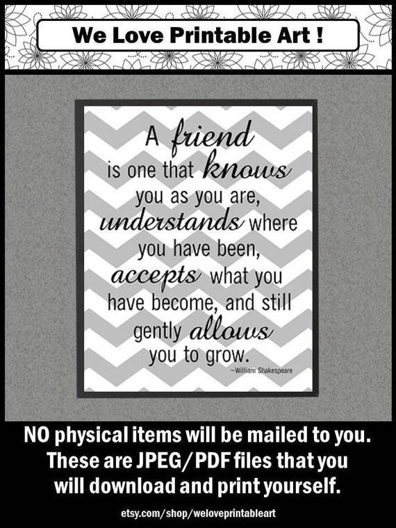 unique friendship gifts gray chevron friendship quotes best