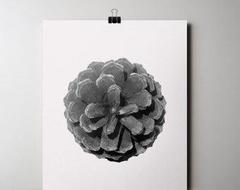 Nature Print, Pine Cone Poster, Pine Tree Print INSTANT DOWNLOAD, Black and White Photography, 16 x 20 Poster, Minimalist Pinecone Printable