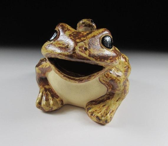 Plus de grenouilles datant