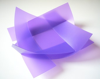 Violet Shell - LILY
