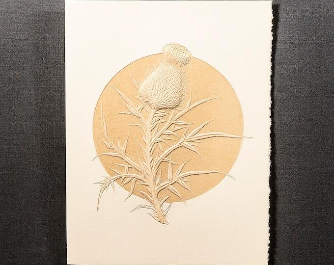 6 Thistle embossed cards.Letterpress Flower cards. Set of 6 cards.Blank inside.