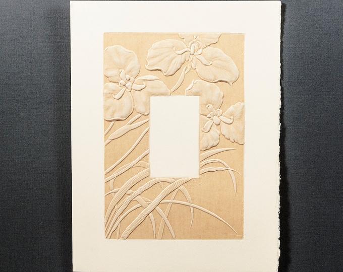 6 Iris Frame cards.Letterpress Flower cards.Plant cards.Iris cards Set of 6 cards.Blank inside.