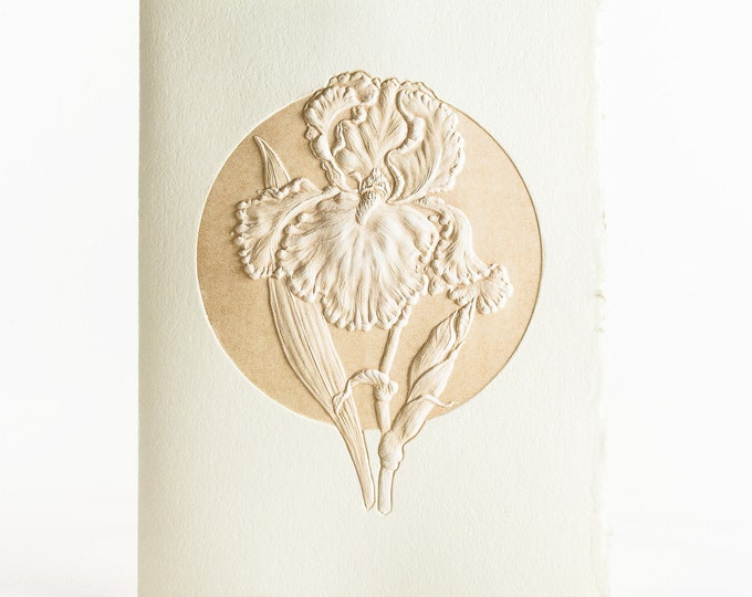 6 Iris embossed cards.Letterpress Flower cards. Set of 6 cards.Blank inside.Big Iris card.