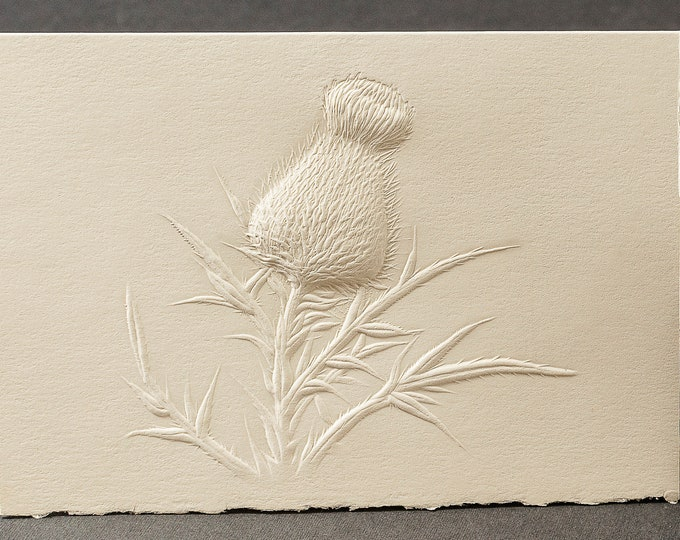 8 Thistle Embossed Cards.Stationery gift. Floral cards.Botanical cards. Blank inside.
