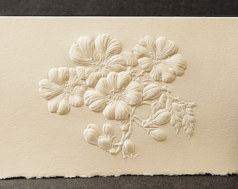 8 Plum Blossom Cards.Mothers Day Gift. Floral cards.Botanical cards. Blank inside.