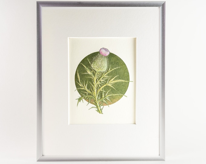 Thistle Matted Print.Floral Wall Decor.Floral Wall Art.8x10 Print.Ready to frame.