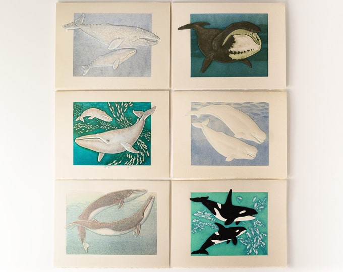 6 Whale Assorted Cards. Embossed Whales Card Set. Ocean card set. Marine Life cards. Wildlife cards. Blank inside.