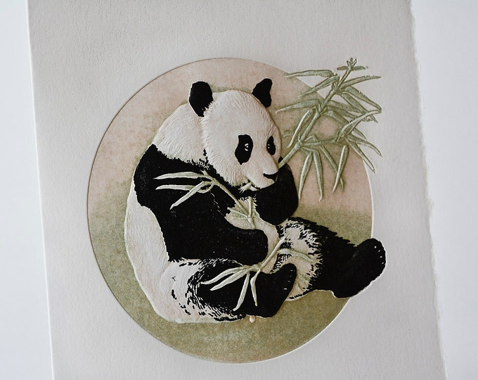Panda Bear Card Animal Card Embossed Letterpress Get well Card Single Card Blank Inside