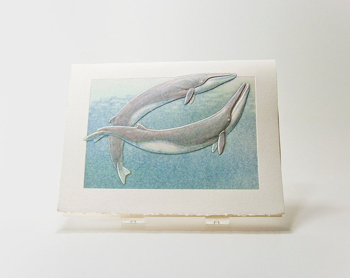 Fin Whales Card. Couple card.Wildlife card Embossed Set of 6 cards or Single Card. Blank inside.