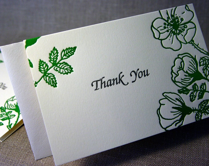 8 Wild Rose Thank You Cards. Letterpress. Floral Thank You Card. Blank inside.