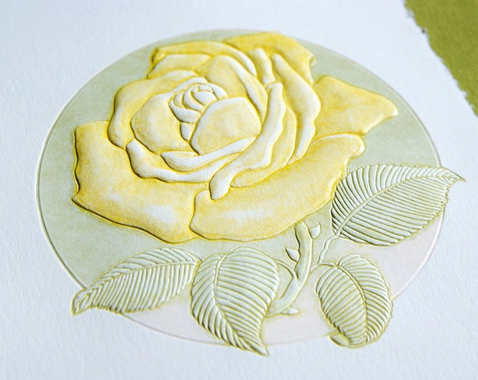 Yellow Rose Card. Letterpress floral card.Embossed Rose card. Set of 6 cards or Single card. Blank inside.
