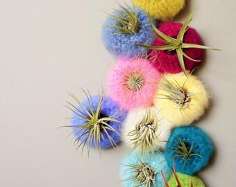 Mini Spun Sugar Air Plant Pod / Airplant Pot Tillandsia / Yarn Pod / Fluffy Yarn Bowl / Vertical Garden Basket / Felted Pod / Sea Urchin Pod