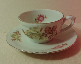 Bavaria, Germany cup & saucer