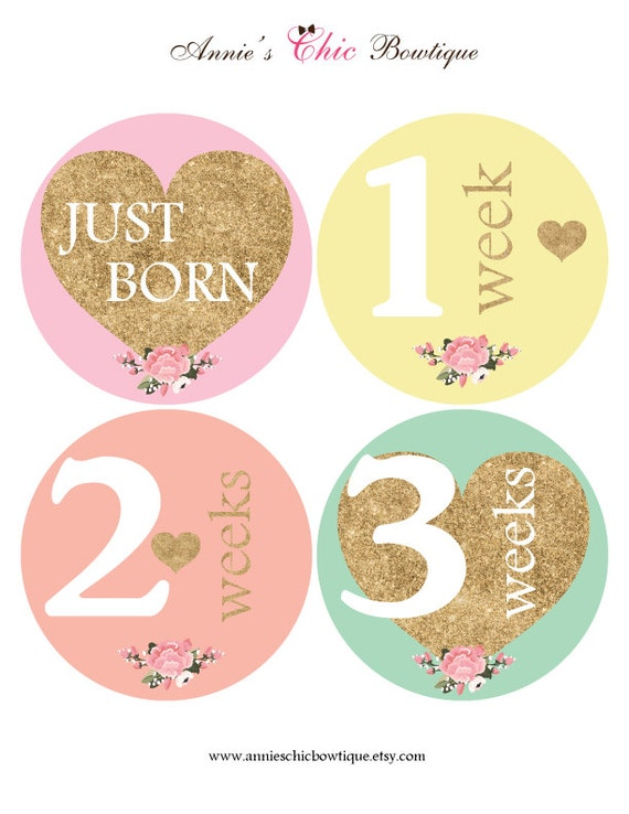 18 Month Stickers: Girl Monthly Stickers Glitter Month Stickers Glitter Heart
