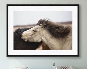Horse Photography, Iceland Photography, Horse Art Print, Iceland Art, Animal Photography, Two Horses, Nature Print