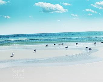 Beach Wall Art, Sea Gulls, Beach Photography, Sand, Sea, Shore Print, Turquoise, Aqua, Nature Print, Cottage Chic Wall Art, Home Decor