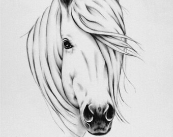 "Horse Print, 8""x10"" White Horse Sketch, Wild Horse Art, Charcoal Horse Decor, Horse Mane, Farm Decor Farmhouse Art, Equine Art, giclee print"