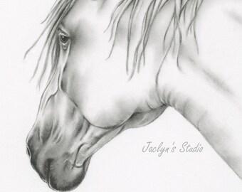 "Charcoal Horse Drawing Giclee Print 8""×10"", Horse Art, Horse Drawing, Horse Sketch, White Horse, Equine Art, Charcoal Horse, Pencil Horse"