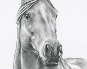"Horse Art, ORIGINAL Charcoal Horse Drawing, 8""x10"" Horse Sketch, Equine Art, Horse Sketch, Charcoal Drawing, Farm Art, Farmhouse Decor"