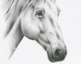 "ORIGINAL Charcoal Horse Drawing,8""x10"" White Horse Art, Horse Sketch, Equine Art, Horse Sketch, Charcoal Drawing, Farm Art, Farmhouse Decor"