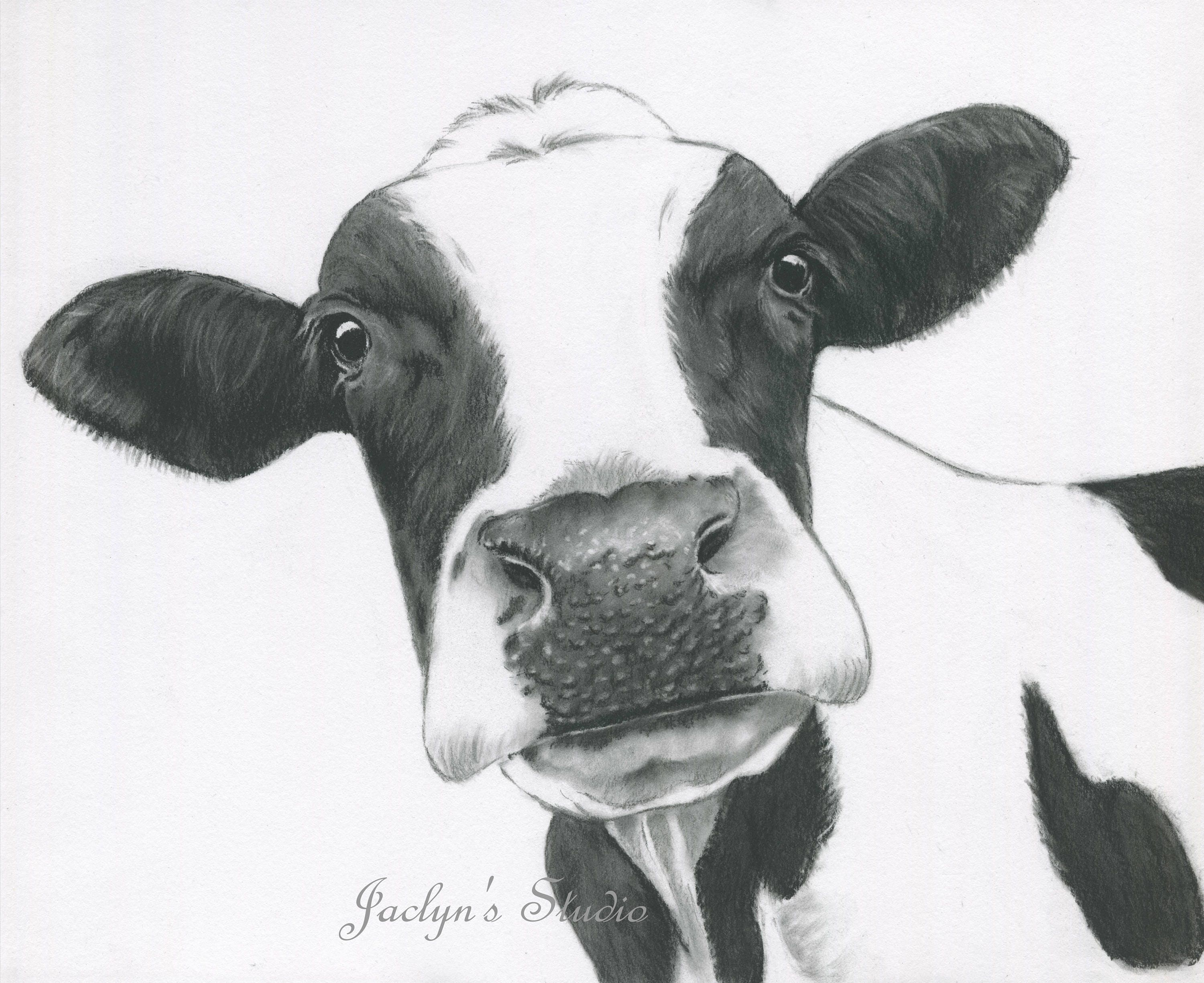 10x8 Cow Print Charcoal Drawing Holstein Cow Art Cow Drawing Cow Sketch Cow Decor Farmhouse Art Charcoal Cow Dairy Cow Art