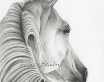"""Charcoal Drawing Giclee Print - 8""""x10"""", Charcoal Sketch, Charcoal Horse Art, Horse Print, Horse Sketch, Horse drawing, Equine Art"""
