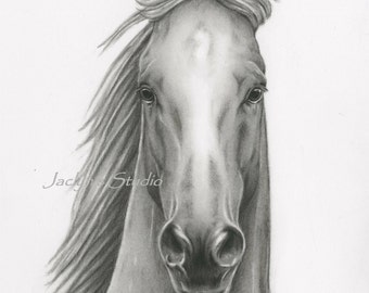 "Charcoal Horse Drawing Giclee Print 8""x10"", Horse Sketch, Horse Charcoal Drawing, Wild Horse,  Horse Art, Horse Print"