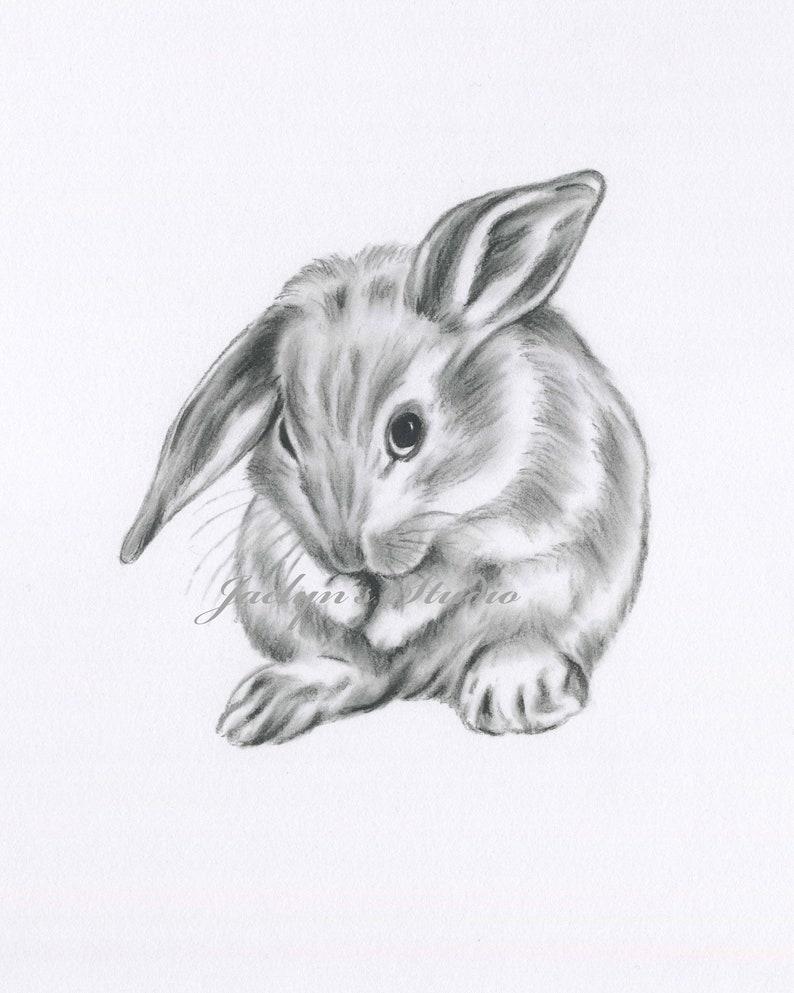 - Rabbit Drawing Bunny Drawing Bunny Print Rabbit Print Etsy