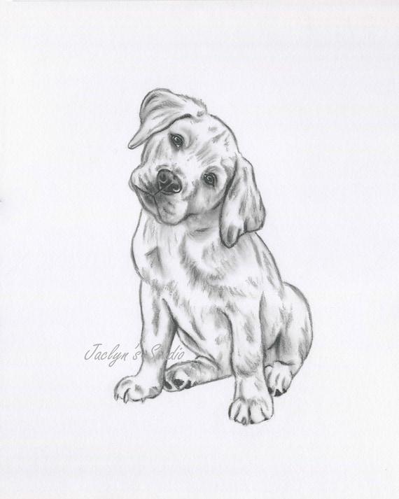 Golden Lab Art Lab Drawing Golden Lab Print Lab Sketch Dog Etsy