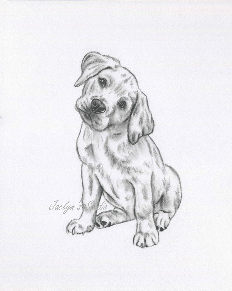 785d96e74684 Golden Lab Art Lab Drawing ORIGINAL Drawing Lab Sketch Dog