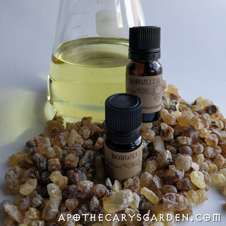 Black Frankincense Essential oil Sweet-Amber-Boswellia image 0
