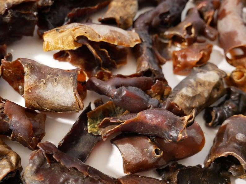 Bushman's Candle Bark-A beautiful Amber aroma-Sustainable image 0