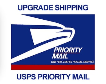 2-3-DAY PRIORITY  SHIPPING