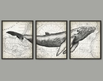 Humpback Whale Wall Art Poster Set Of 3 - Whale Art Print - Humpback Whale Poster - Humpback Whale Wall Art - Marine Biology (AB393)