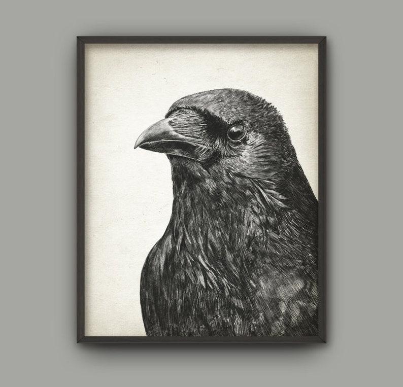 Raven Bird Art Print Raven Pencil Drawing Print Raven Decor Raven Bird Picture Raven Wall Art Print Gothic Art Poster