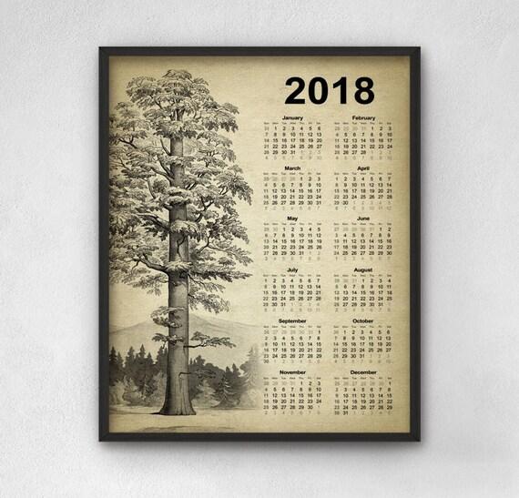 Secuoya gigante árbol calendario 2018 secoya gigante árbol
